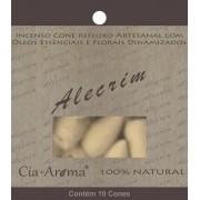 Incenso Cone Alecrim | 10 Cone Refluxo