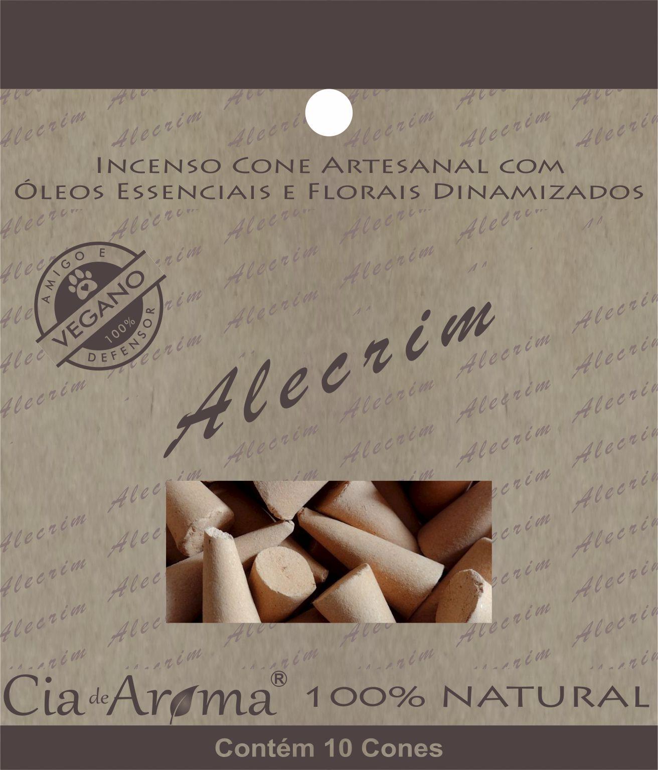 Incenso Cone Alecrim | 10 Cone