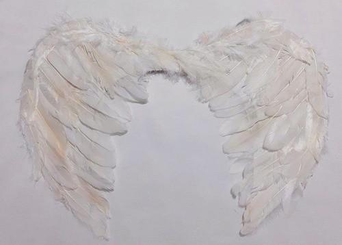 Asas de Anjo para Fantasias