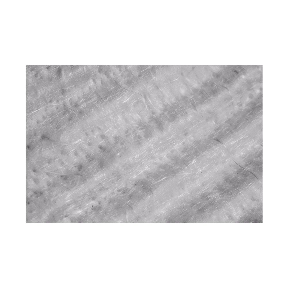 Lã De Vidro Foco Racing - 330x550x15 mm