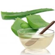 Extrato Glicólico Aloe Vera (Babosa) 100ml
