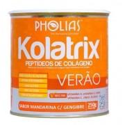 KOLATRIX VERÃO (PEPTÍDEOS DE COLÁGENO) MANDARINA 250G - PHOLIAS