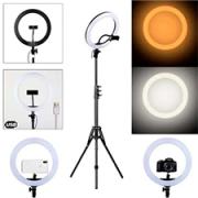 Ring Light Led Iluminador 26cm - Tripé 2 Metros com Suporte de Celular