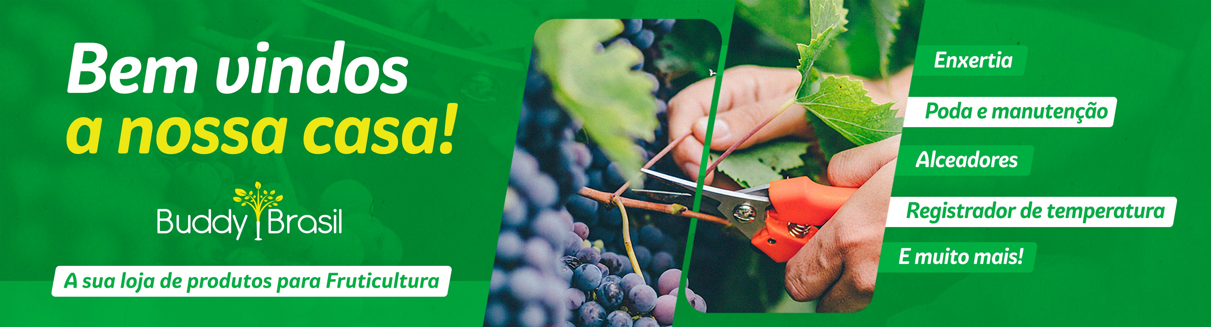 a buddy brasil é uma loja especializada em produtos para fruticultura: produtos para enxertos, ferramentas de podas e manutenção, alceadores, peças e acessórios