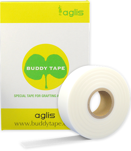 Fita Biodegradável Para Enxertia Buddy Tape