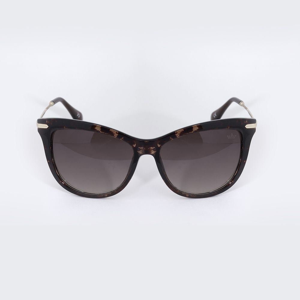 Óculos de Sol Carmim Tartaruga Marrom Brilhante 42182