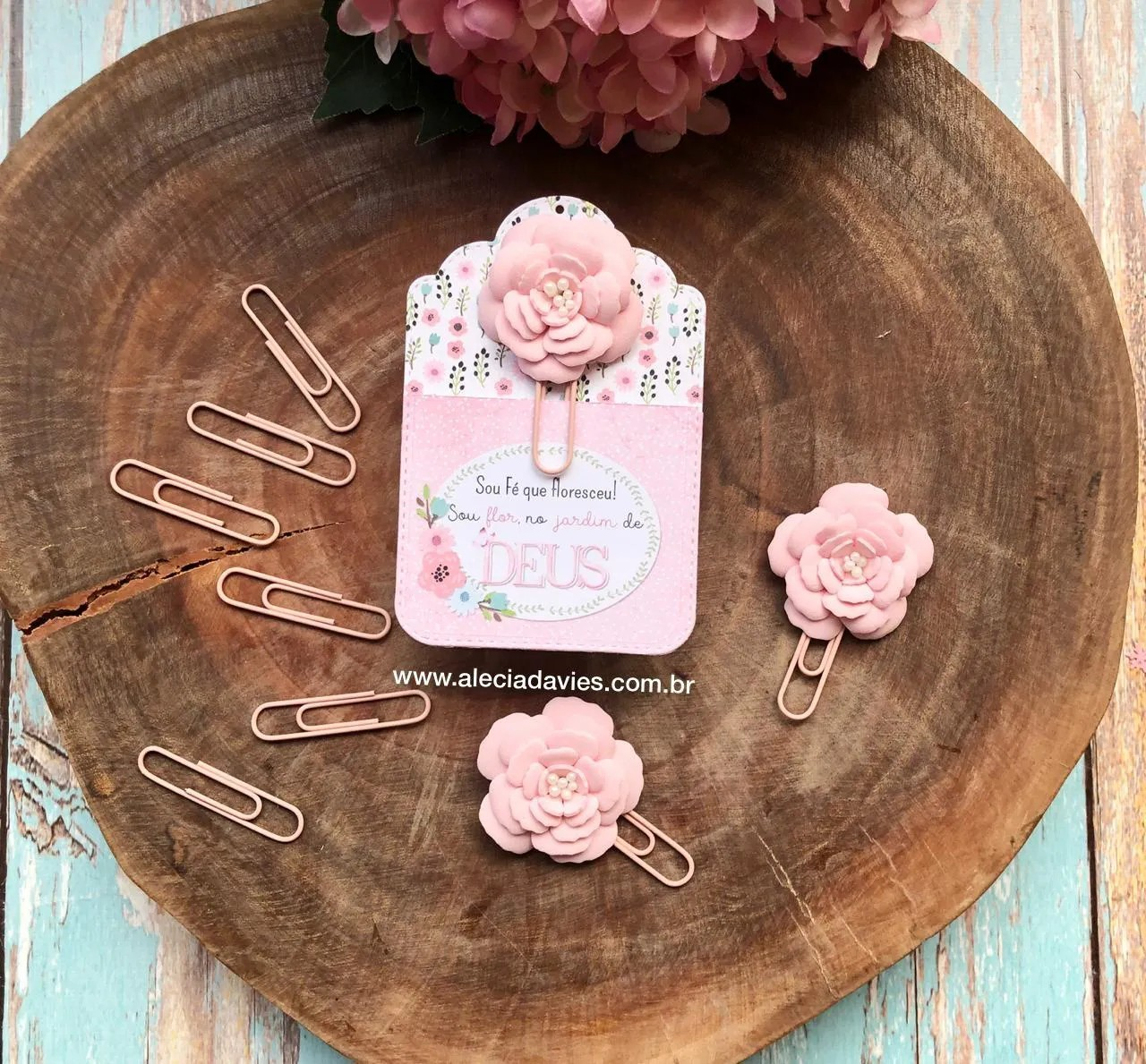 clips rosa (longo)