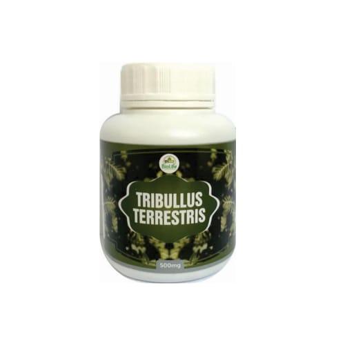 TRIBULUS TERRESTRIS 500mg - 300 CÁPSULAS - AFRODISIACO