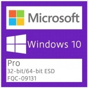 Windows 10 Pro ESD Retail FPP