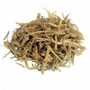 Abutua Chá (Chondrodendron Platyphyllium)