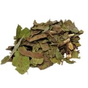 Aroeira Folha Chá (Schinus Terebinthifolia)
