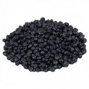 Blueberry Desidratado