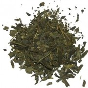 Chá Verde - Banchá (Camellia Sinensis)