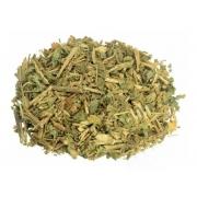 Guine Chá