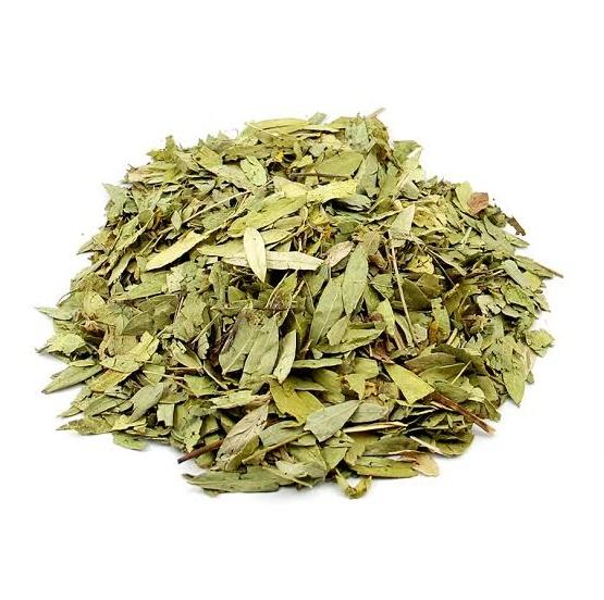 Alcachofra Chá (Cynara Scolymus)