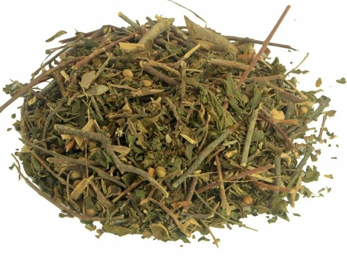 Catinga de Mulata Chá