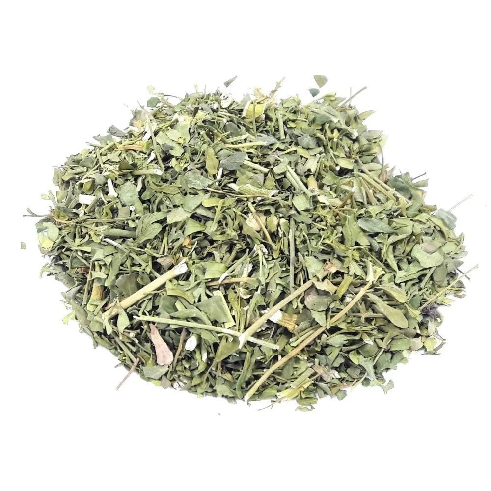 Chá de Arruda (Ruta Graveolens)