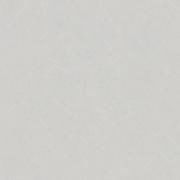 Porcelanato Incepa LINNE CINZA ABS Áspero (A)  Bold 61x61