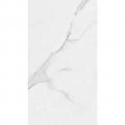 Revestimento Eliane PLACE BR Brilhante 32,5x59 (A) Retificado