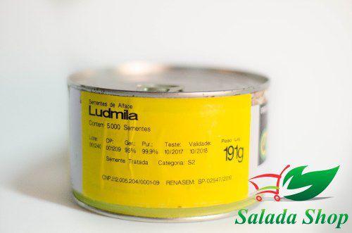 Semente de Alface Ludmila