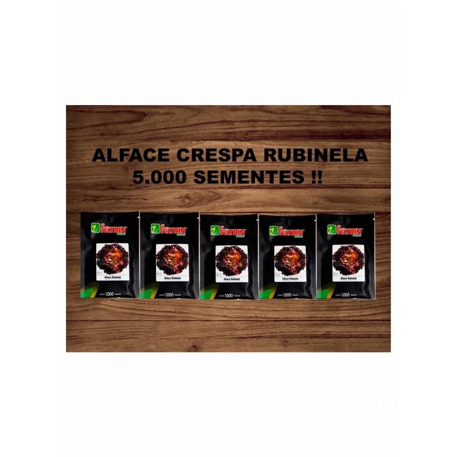 ALFACE CRESPA RUBINELA PELETIZADA 5.000 SEMENTES