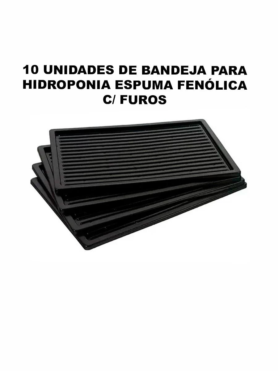 BANDEJA PARA HIDROPONIA ESPUMA FENÓLICA C/ FUROS - 10 UNIDADES