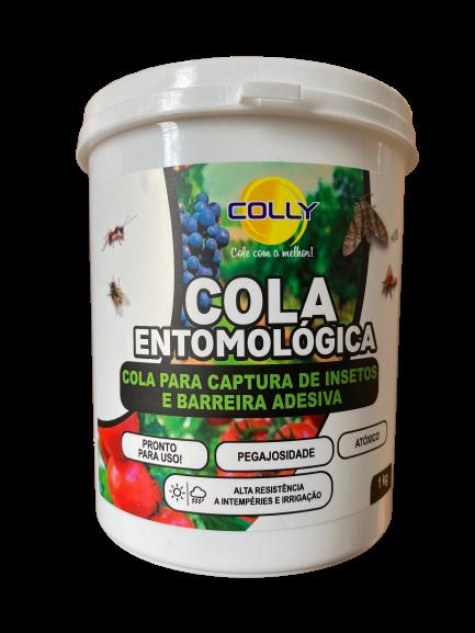 COLA ENTOMOLOGICA  COLLY - 1KG