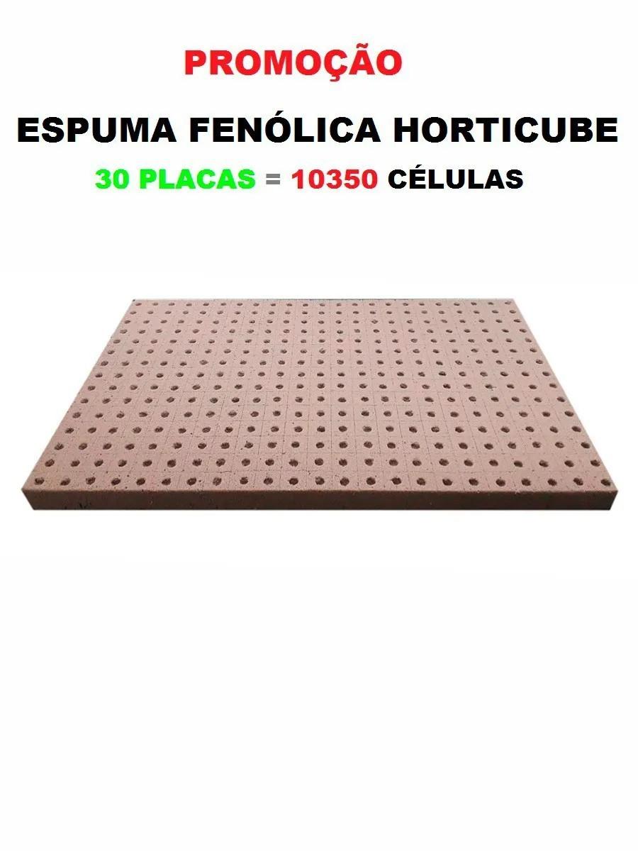ESPUMA AGRÍCOLA HORTICUBE 2 X 2 X 2 cm FURO ALFACE  30 PLACAS