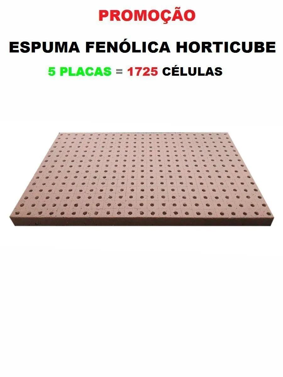 ESPUMA AGRICOLA HORTICUBE 2 X 2 X 2 cm FURO ALFACE - 5 PLACAS