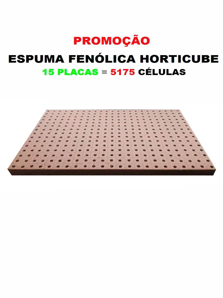 ESPUMA AGRÍCOLA HORTICUBE 2 X 2 X 2 cm FURO RÚCULA - 15 PLACAS