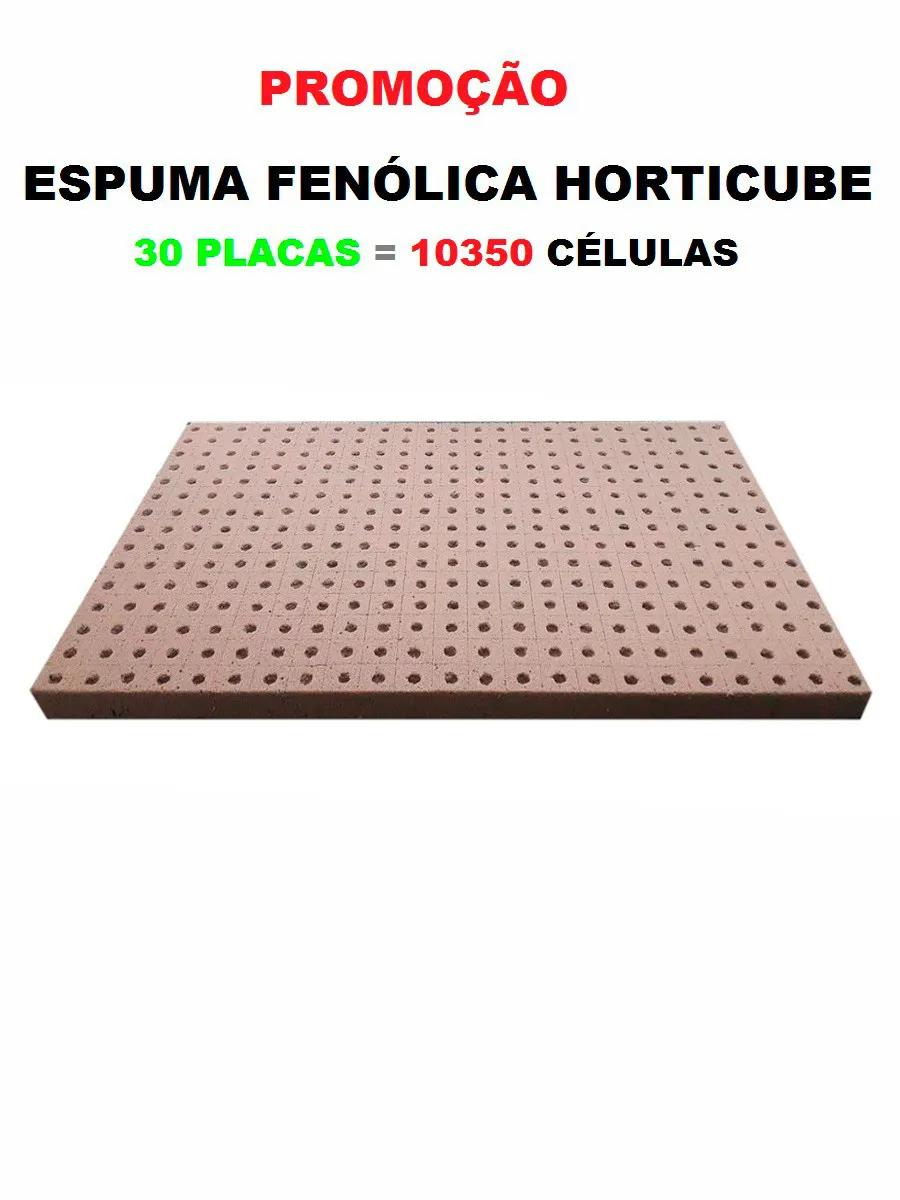ESPUMA AGRÍCOLA HORTICUBE 2 X 2 X 2cm FURO RÚCULA - 30PLACAS