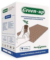 Espuma Fenólica Green Up Modelo:Furo Alface