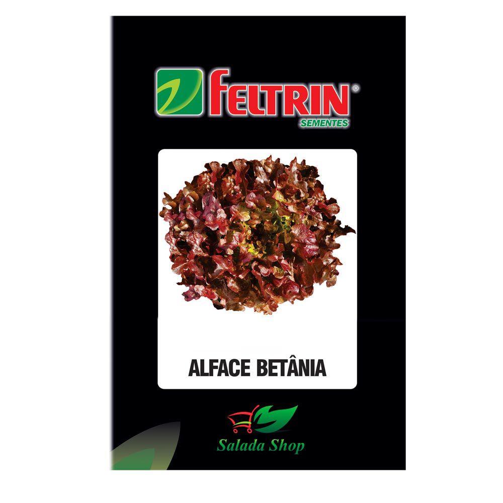 ALFACE BETÂNIA FELTRIN - 1000 SEMENTES PELETIZADAS