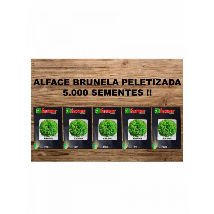 SEM. ALFACE BRUNELA PELET 5MX