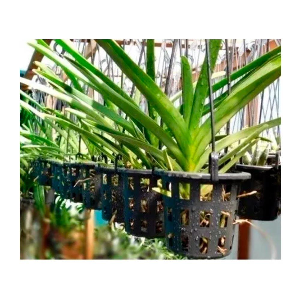10 Vasos Para Orquídea  Vazado - P100