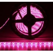 Fita LED 4.8W SMD5050 IP65 12V Pink 5M