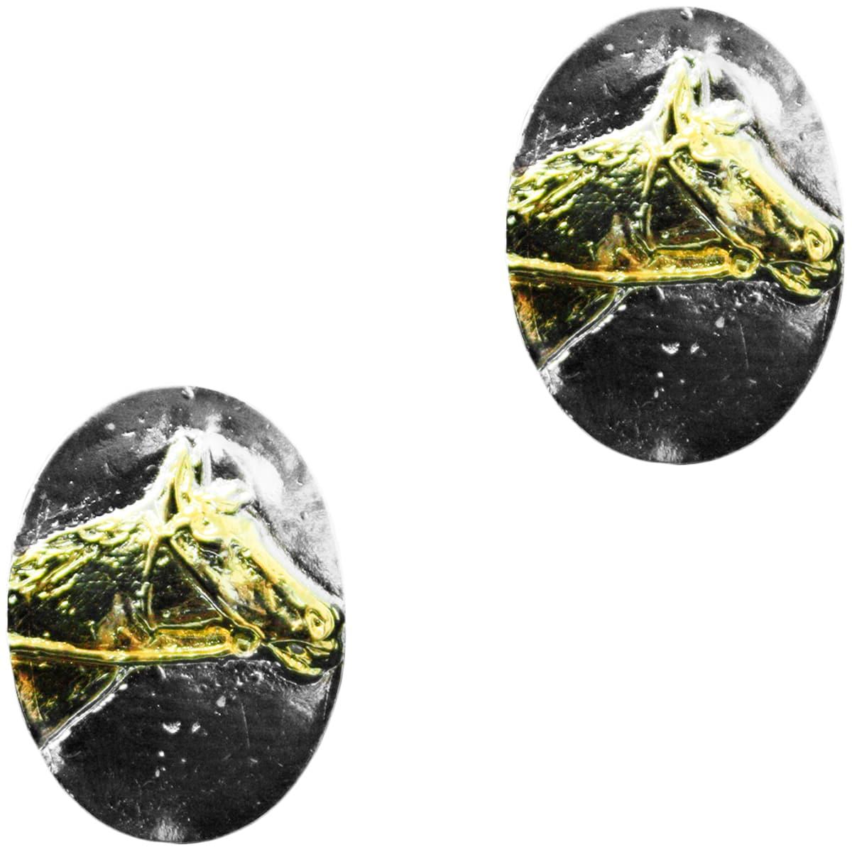 Brinco Feminino Cowboys Medalha My Horse