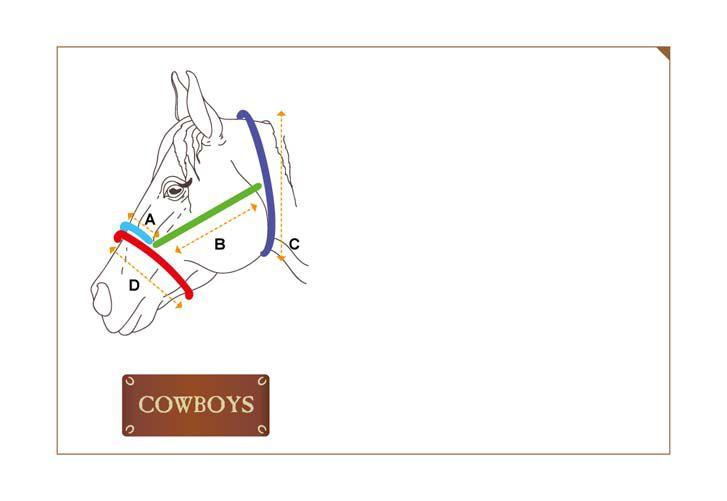 Conjunto Cabresto e Guia Cowboys em Couro e Aço Inox