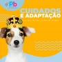 Ração Úmida Natural Cães Adultos PapaPets Recupera 280g