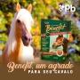 Snack  Benefit Petisco Biscoito Para Cavalos 450 Gramas Supra