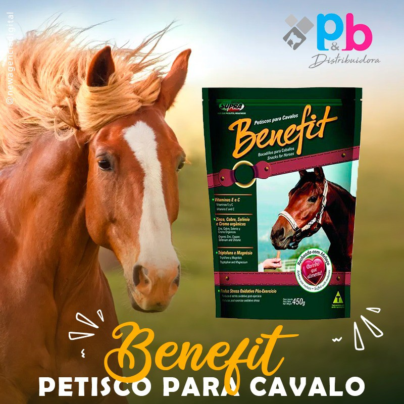 Caixa 12 unidades Snack Benefit Petisco Biscoito Para Cavalos 450g Supra