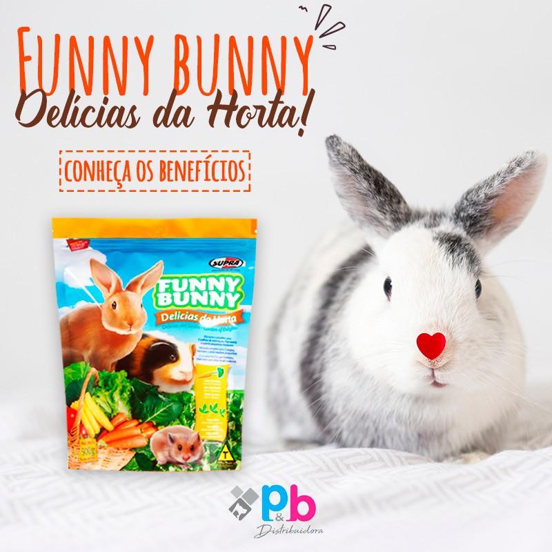 Ração Funny Bunny Delícias da Horta Alimento para Coelhos e Pequenos Roedores 500g