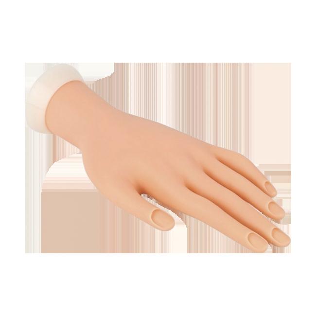 Mão Para Treino Unhas Acrigel