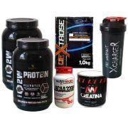 Super Kit Absolut Crescimento e Força -  2 Whey protein 900g  + crea 150g + bcaa 120 caps + dextrose 1kg + coqueteleira