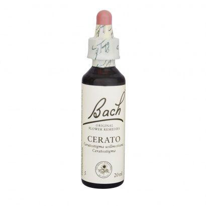 Cerato 20 ml - Bach