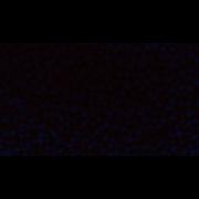 Pirila Branca 250g - Origem Chinesa