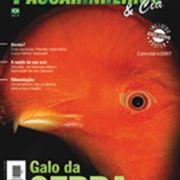 Revista Passarinheiros N41