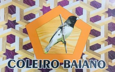 ADESIVO SUPER LUXO PARA GAIOLAS DE PASSEIO/ TORNEIO -COLEIRO BAIANO 01