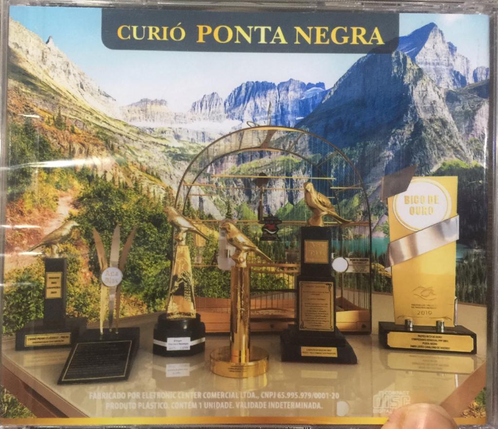 CD DO GRANDE CURIO CAMPEAO PONTA NEGRA