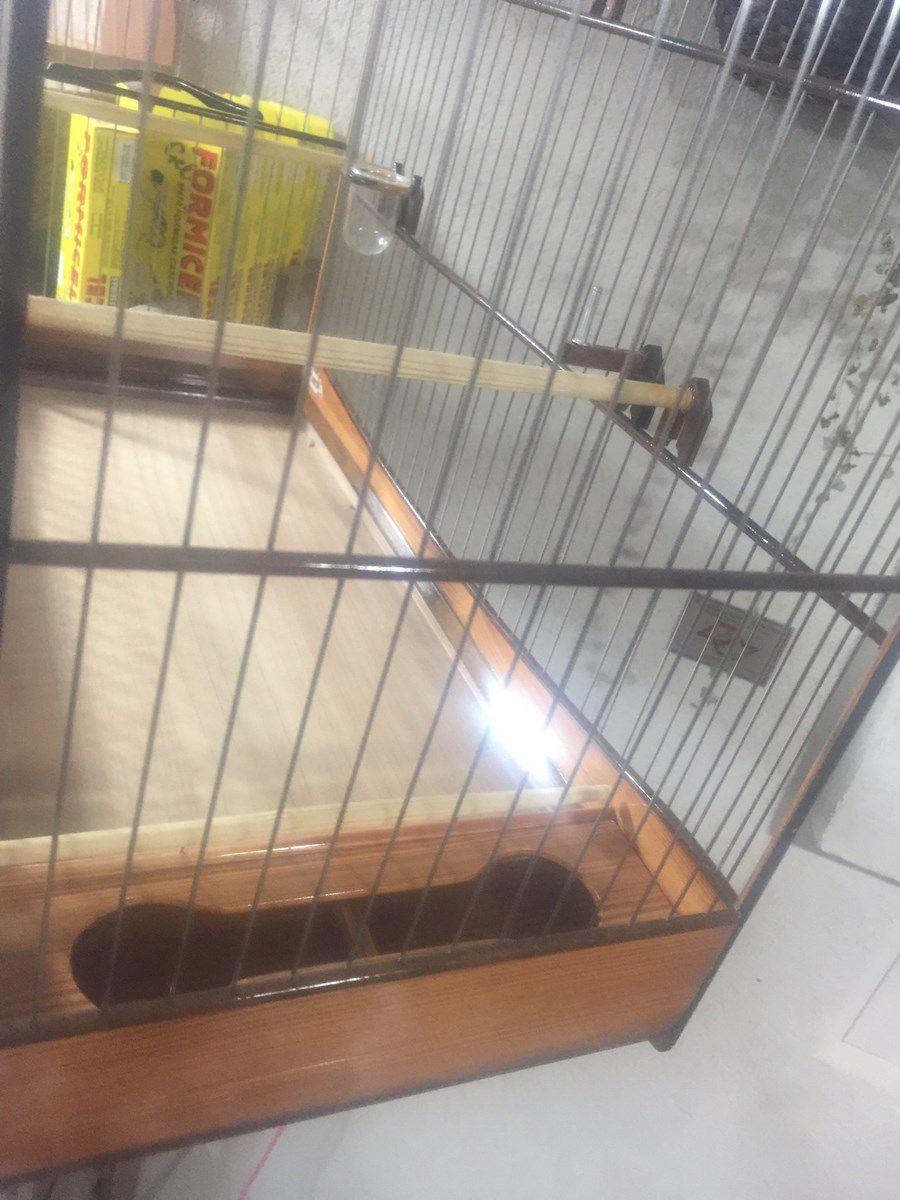 Gaiola Super Luxo N5 Pinho de Riga x Aço Inox